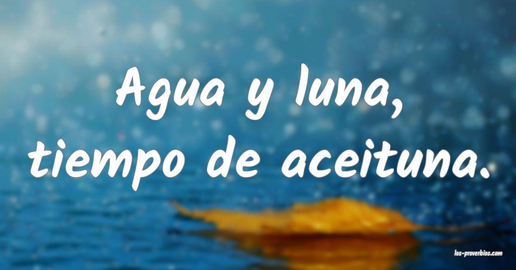 Agua y luna, tiempo de aceituna. ...