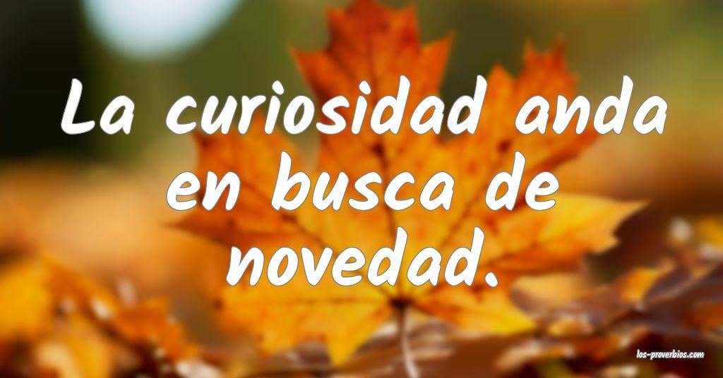 La curiosidad anda en busca de novedad.