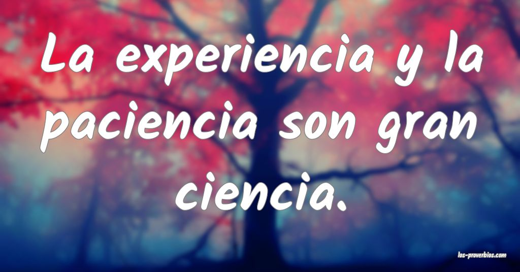 La experiencia y la paciencia son gran ciencia.