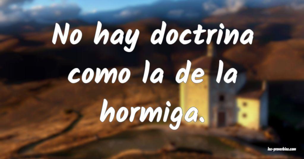 No hay doctrina como la de la hormiga.