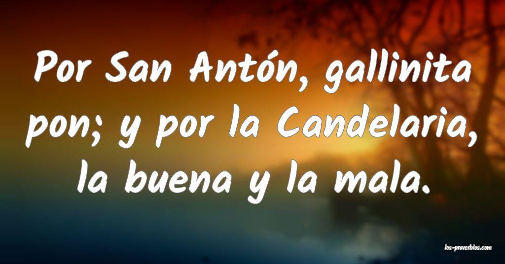 Por San Antón, gallinita pon; y por la Candelaria, la buena y la mala.