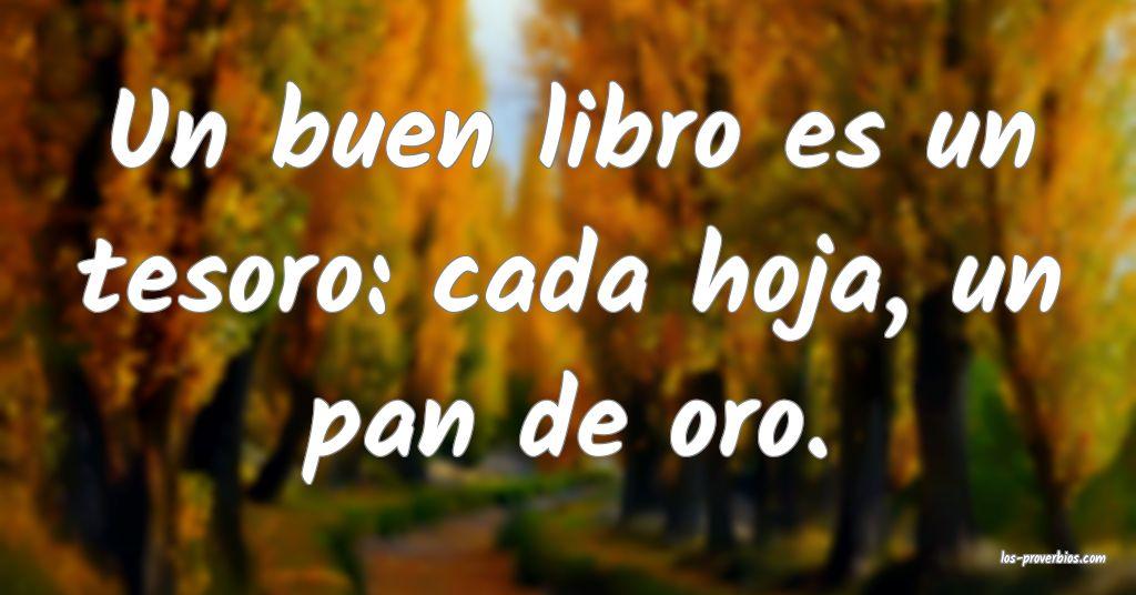 Un buen libro es un tesoro: cada hoja, un pan de oro.