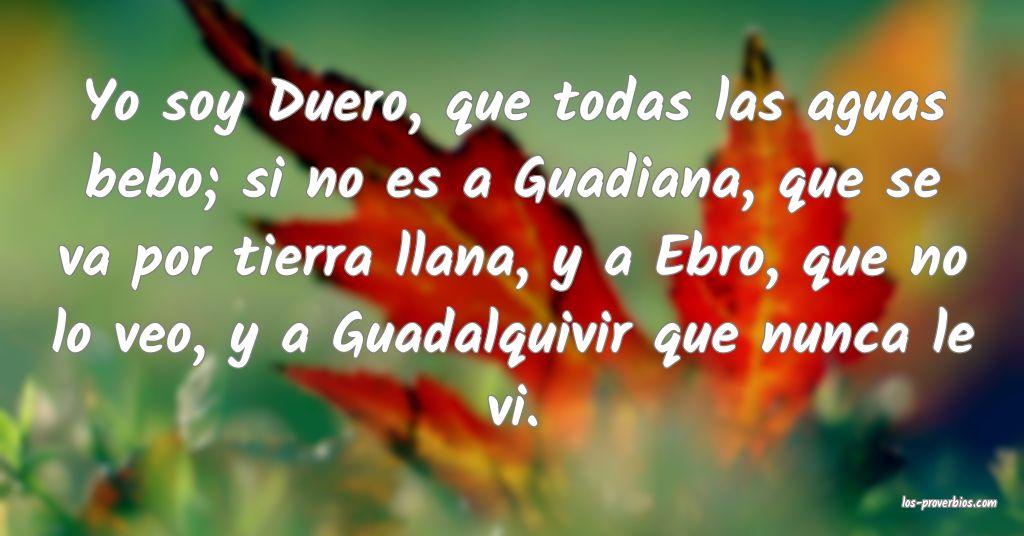 Yo soy Duero, que todas las aguas bebo; si no es a Guadiana, que se va por tierra llana, y a Ebro, que no lo veo, y a Guadalquivir que nunca le vi.