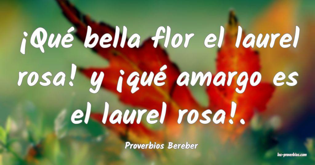 Proverbios Bereber