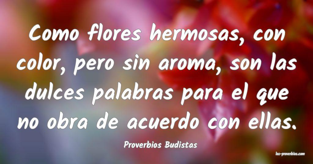 Proverbios Budistas