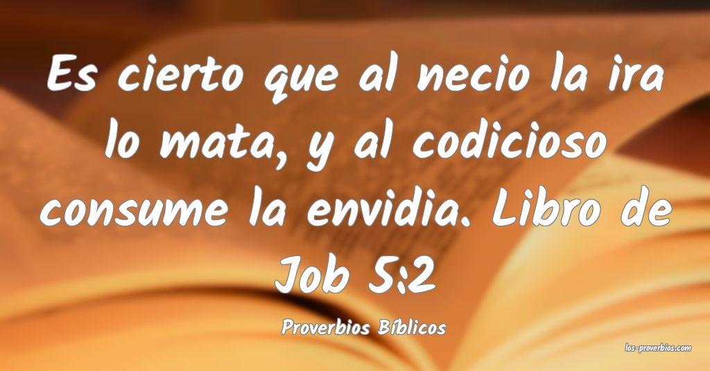 Proverbios Bíblicos