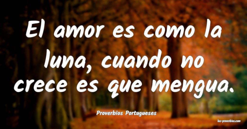 Proverbios Portugueses
